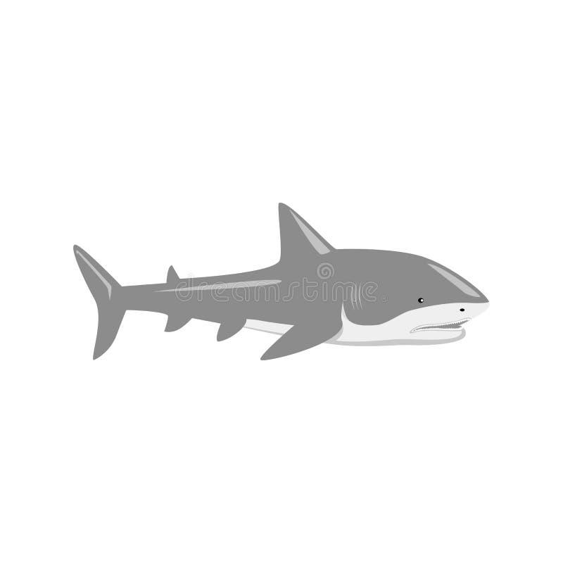 Marine Predator Shark Design Flat ilustração royalty free