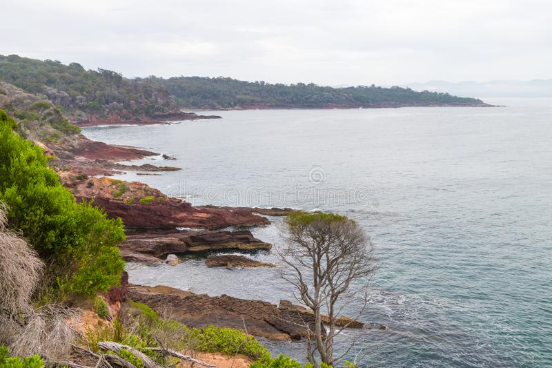 Marine red folded rocks in Ben Boyd National Park. NSW, Australia royalty free stock image
