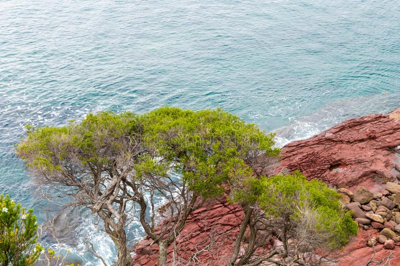 Marine red folded rocks in Ben Boyd National Park. NSW, Australia stock image