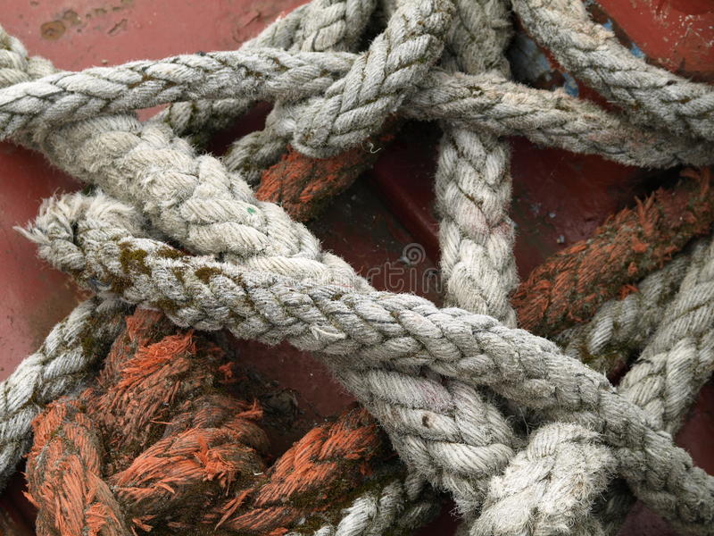 Download Marine Rope stock image. Image of twist, fishing, tied - 20768275
