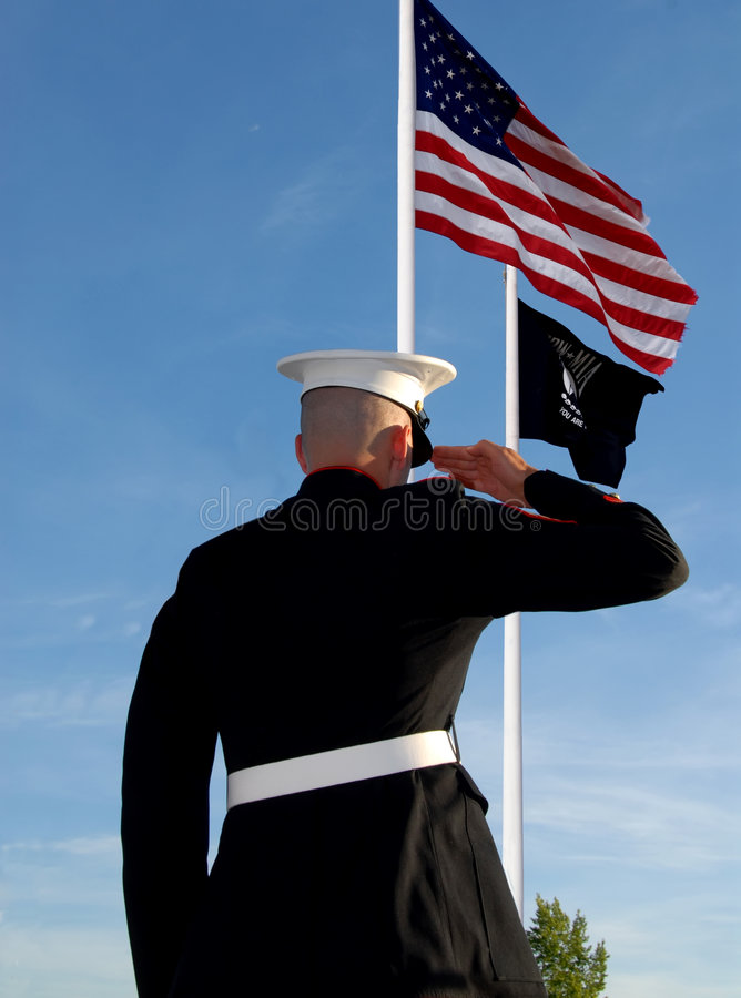 Free Marine Salute Royalty Free Stock Photos - 2802638