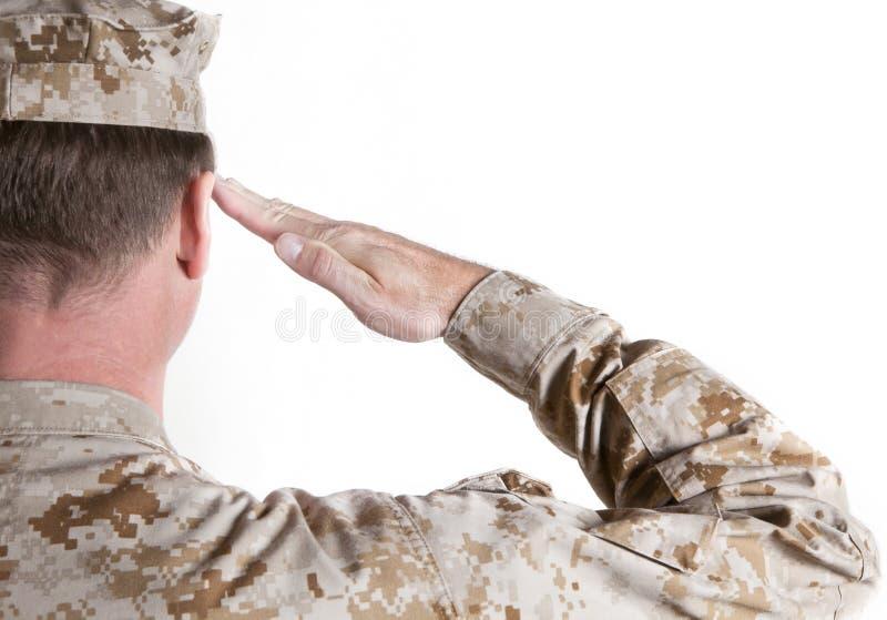 Marine Saluting. Marine in desert uniform saluting stock images