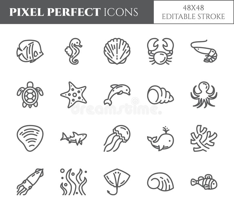 Marine theme pixel perfect thin line icons. Set of elements of fish, shell, crab, shark, dolphin, turtle and other sea creatures r vector illustration