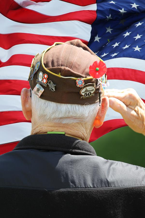 Marine Veteran Saluting in front of flag. Marine Veteran Saluting in front of US Flag at Memorial Day Ceremony royalty free stock photos