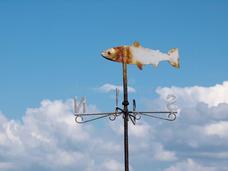Marine weather vane. Shaped like a fish blue sky background royalty free stock photos
