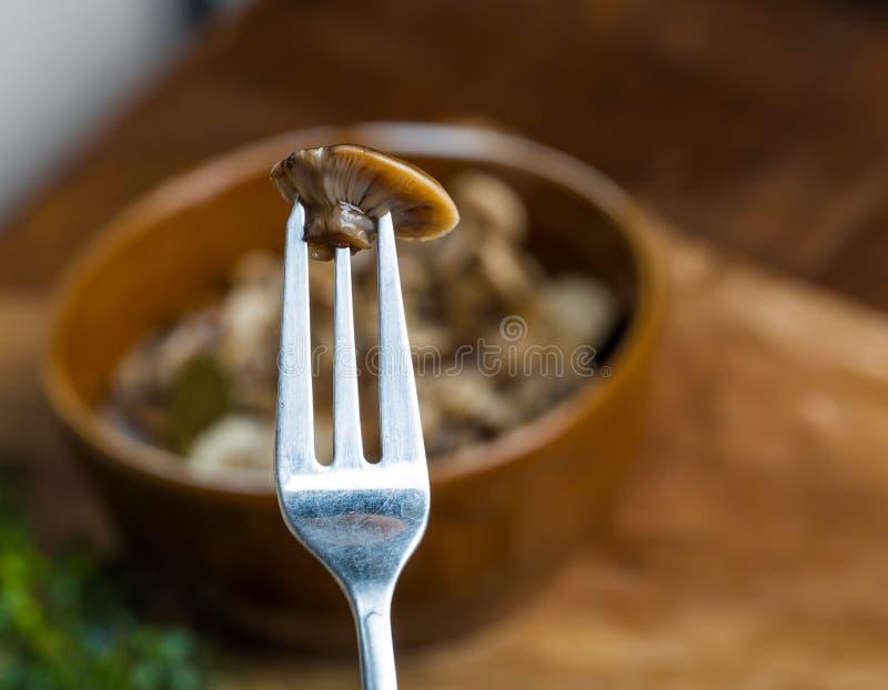 Marinerad honungsvamp i brun bunke på trätabellen fotografering för bildbyråer