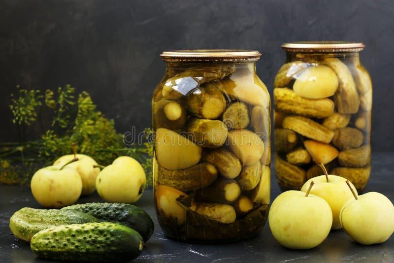 Marinerade gurkor med äpplen i krus är ordnade på en mörk bakgrund royaltyfria foton