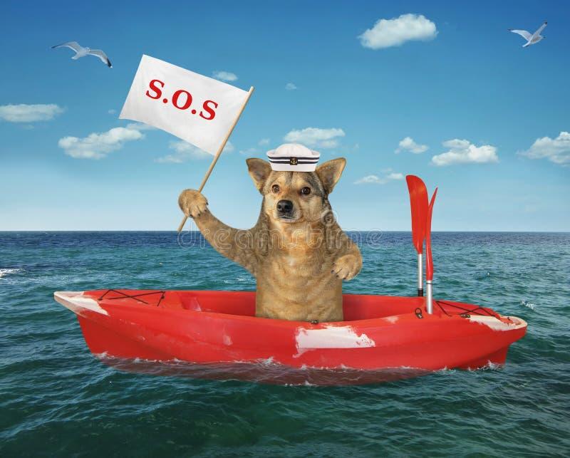 Marinero del perro en un barco rojo fotos de archivo libres de regalías