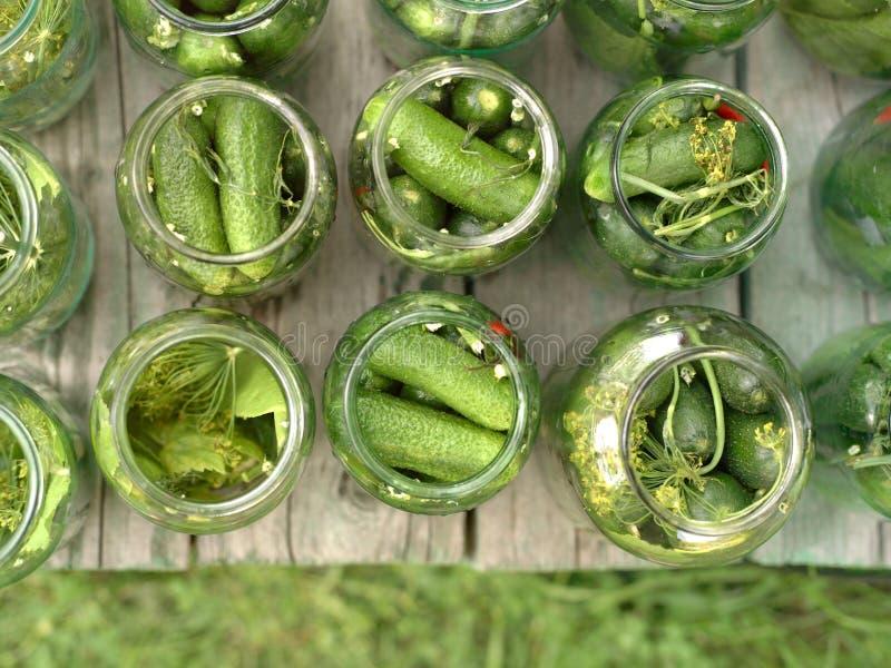 Marinierte Gurken in den Gläsern lizenzfreie stockfotos