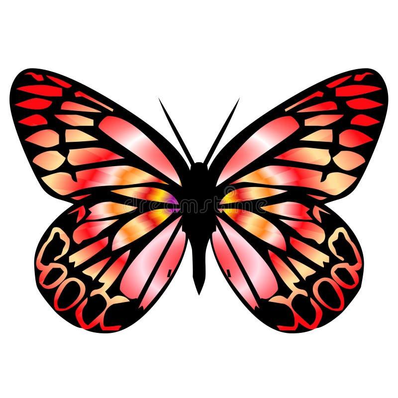 Mariposa 9 libre illustration