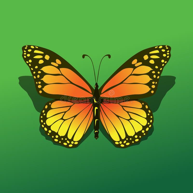 Mariposa aislada illuminada en el fondo verde con el ejemplo simple realista hermoso del icono de la sombra stock de ilustración
