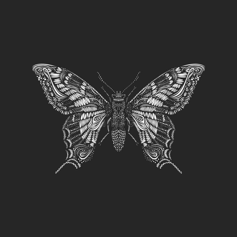 Mariposa asombrosa de la mosca stock de ilustración