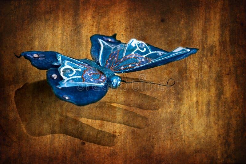 Mariposa azul en la mano de la mujer - color selectivo encendido imagen de archivo