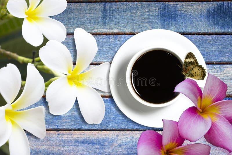 Mariposa de la taza de café en de madera imagen de archivo libre de regalías