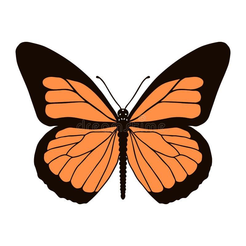 Mariposa de monarca realista en color aislada en el fondo blanco Ilustraci?n del vector stock de ilustración