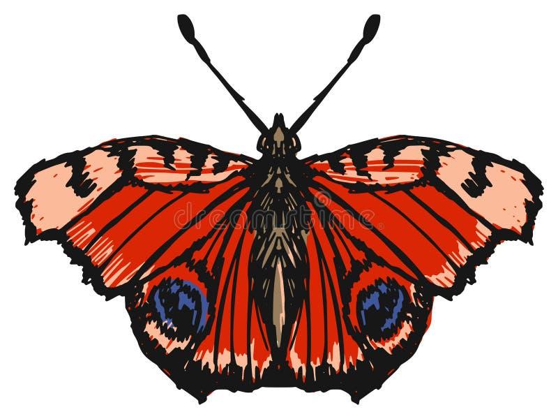 Mariposa de pavo real ilustración del vector