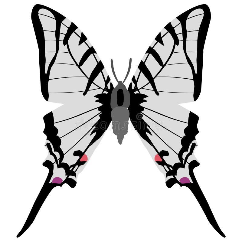 Mariposa de Swallowtail ilustración del vector