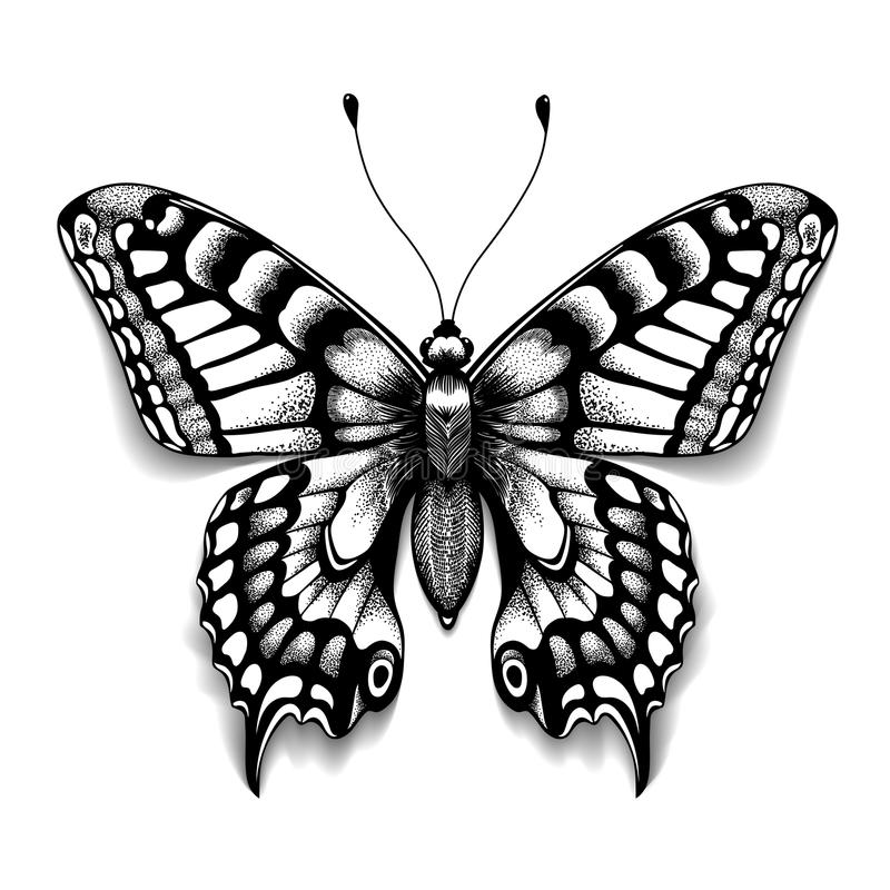 Mariposa del arte del tatuaje para el diseño y la decoración Mariposa realista con la sombra Bosquejo del vector de la mariposa ilustración del vector