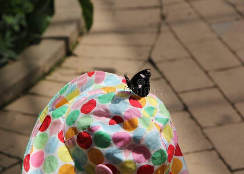 Mariposa en el sombrero de una niña imágenes de archivo libres de regalías