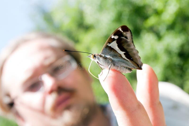 Mariposa en la mano del hombre fotografía de archivo libre de regalías
