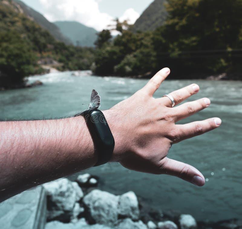 Mariposa hermosa en el reloj elegante en la mano contra la perspectiva del río y de la naturaleza verde fotografía de archivo libre de regalías