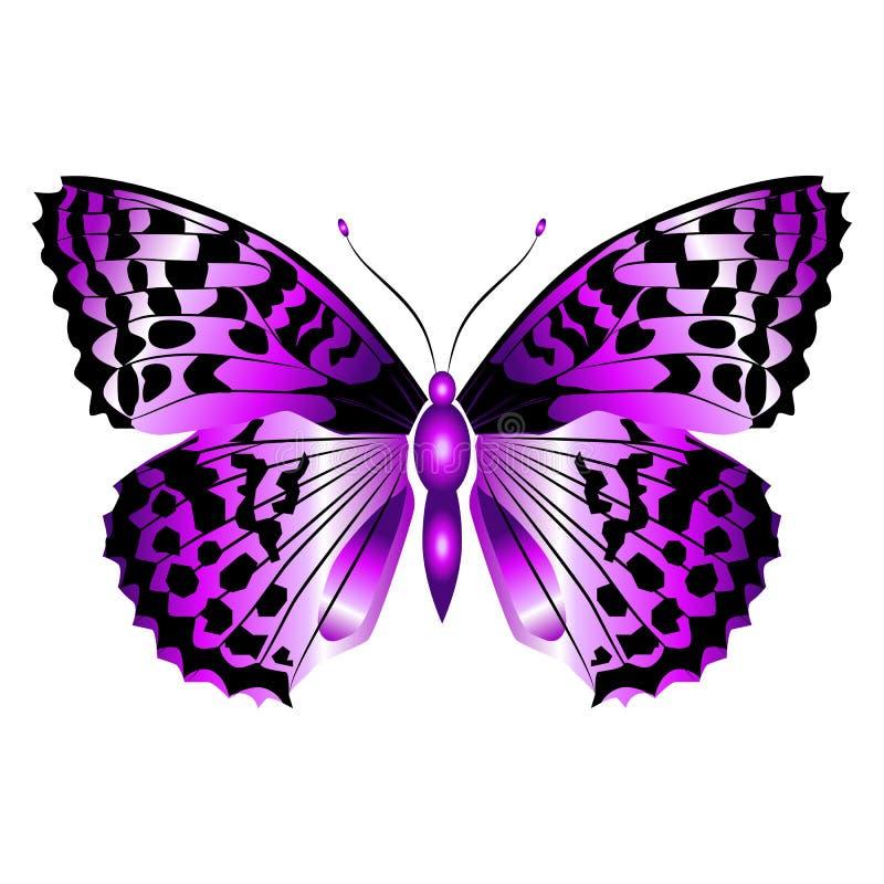 Mariposa púrpura hermosa brillante Ilustración del vector aislada fotografía de archivo