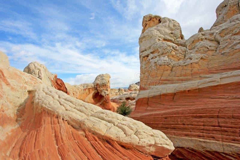 Mariposa, una formación de roca en el bolsillo blanco, motas CBS del sur, desierto bermellón de los acantilados del barranco de P fotografía de archivo