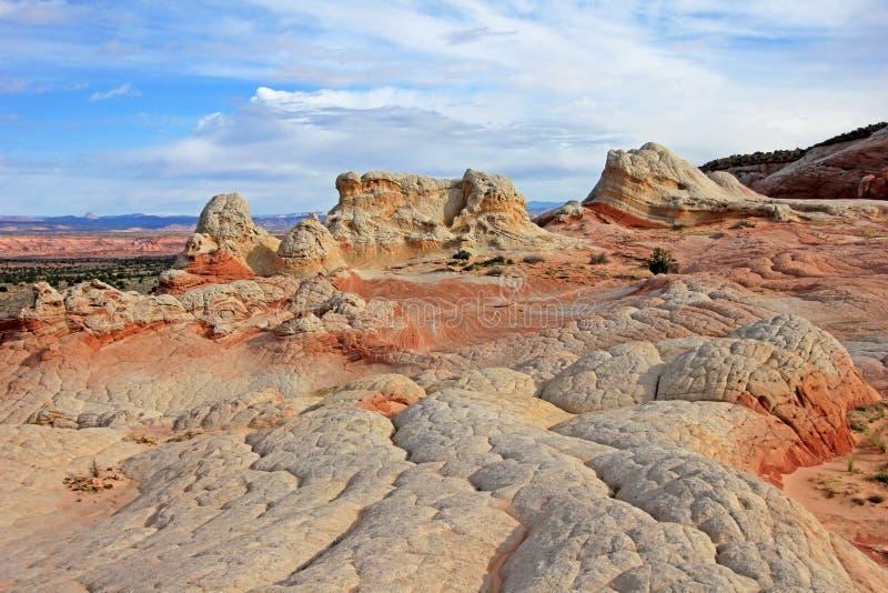 Mariposa, una formación de roca en el bolsillo blanco, motas CBS del sur, desierto bermellón de los acantilados del barranco de P imágenes de archivo libres de regalías