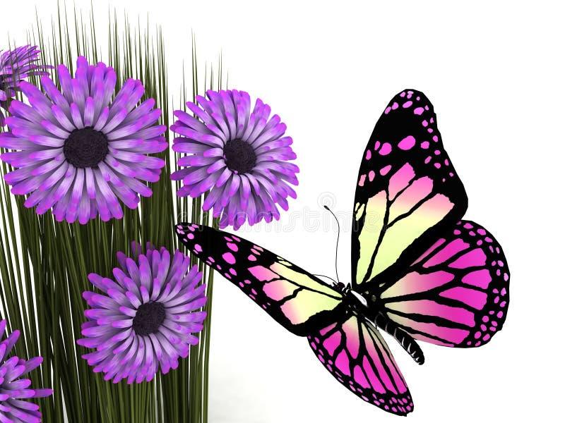 Mariposa y margarita stock de ilustración