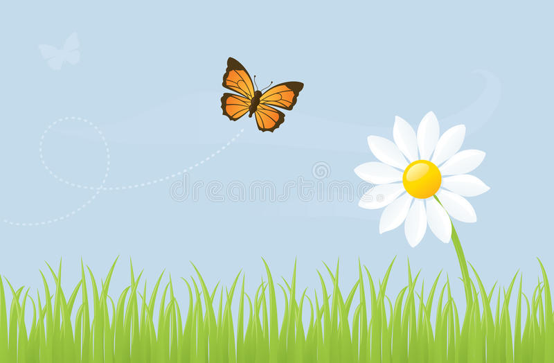 Mariposa y margarita ilustración del vector