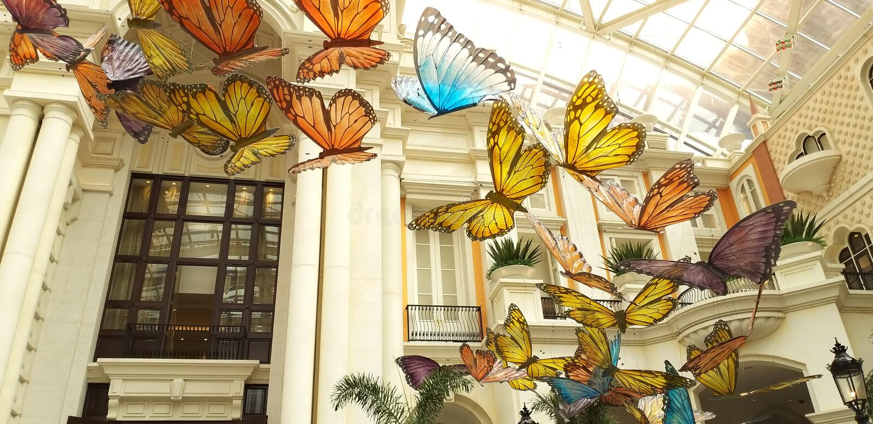 Mariposa y pájaros que vuelan en la alameda fotografía de archivo