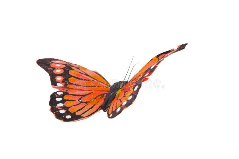 Mariposas fotografía de archivo libre de regalías