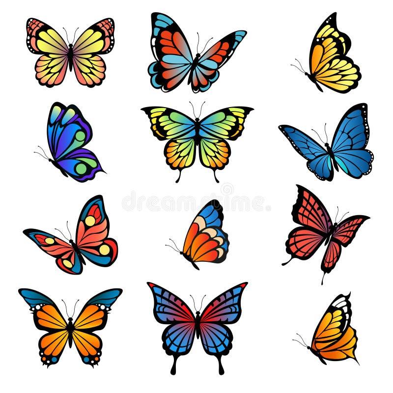 Mariposas coloreadas Imágenes del vector del sistema de las mariposas stock de ilustración