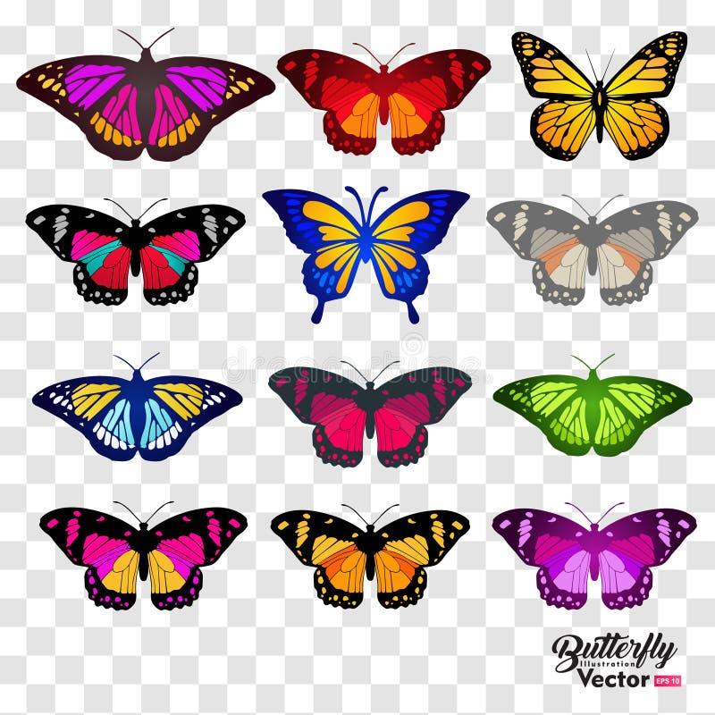 12 mariposas determinadas, aisladas en fondo transparente stock de ilustración