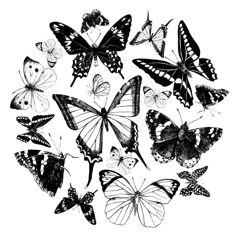 Mariposas dibujadas mano fijadas Ilustración del vector stock de ilustración