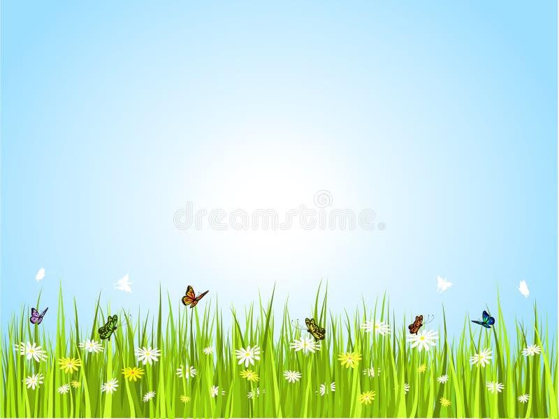 Mariposas en hierba libre illustration