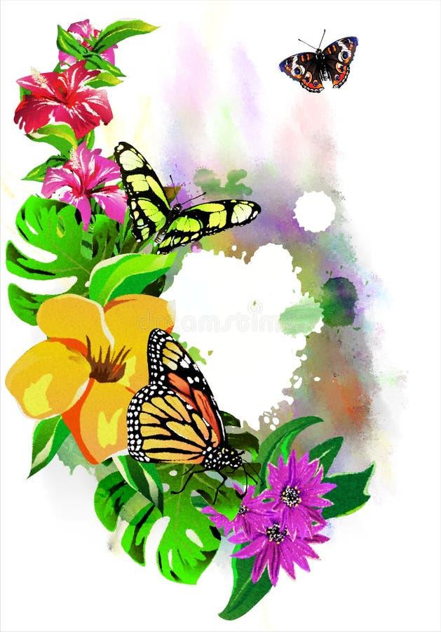Mariposas hermosas con las flores tropicales en descensos coloridos de la pintura libre illustration