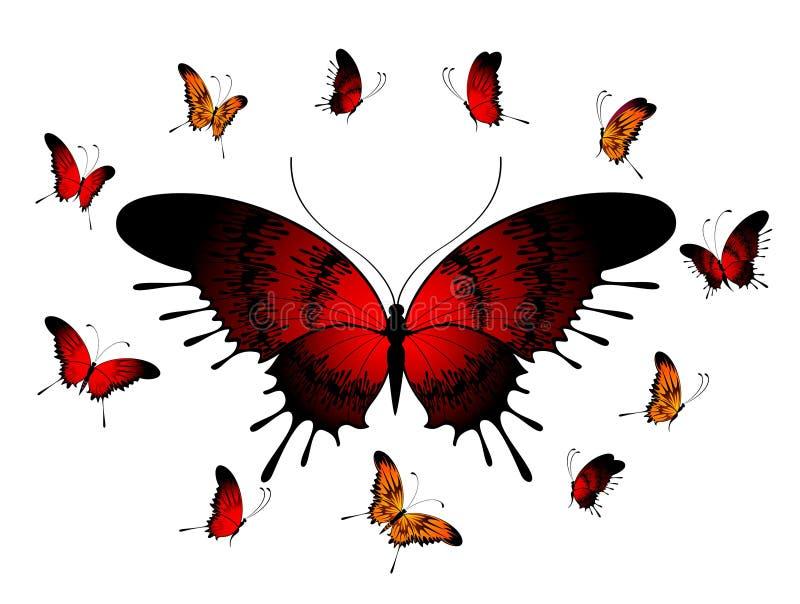 mariposas tropicales hermosas ilustración del vector