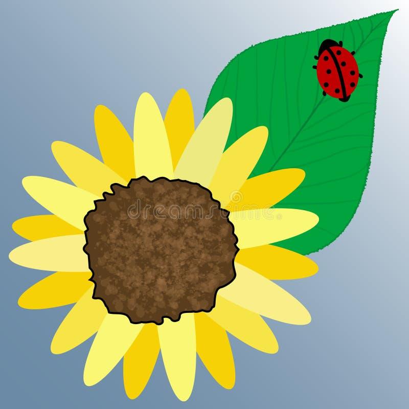 Mariquita en hoja de la flor libre illustration