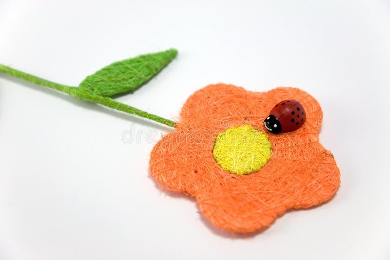 Mariquita en una flor foto de archivo