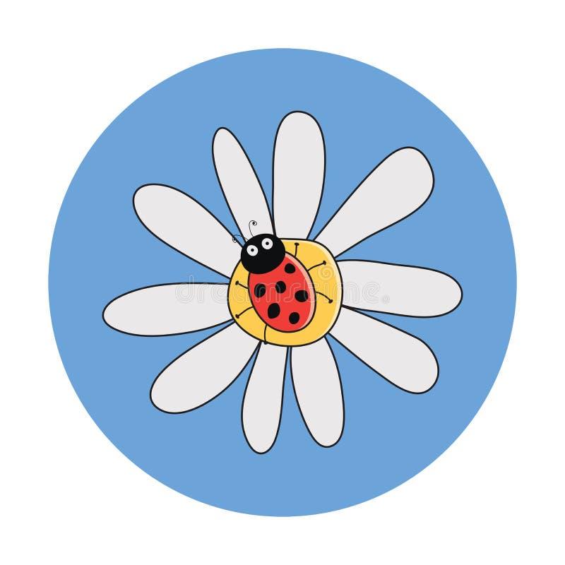 Mariquita roja en una flor de la manzanilla libre illustration