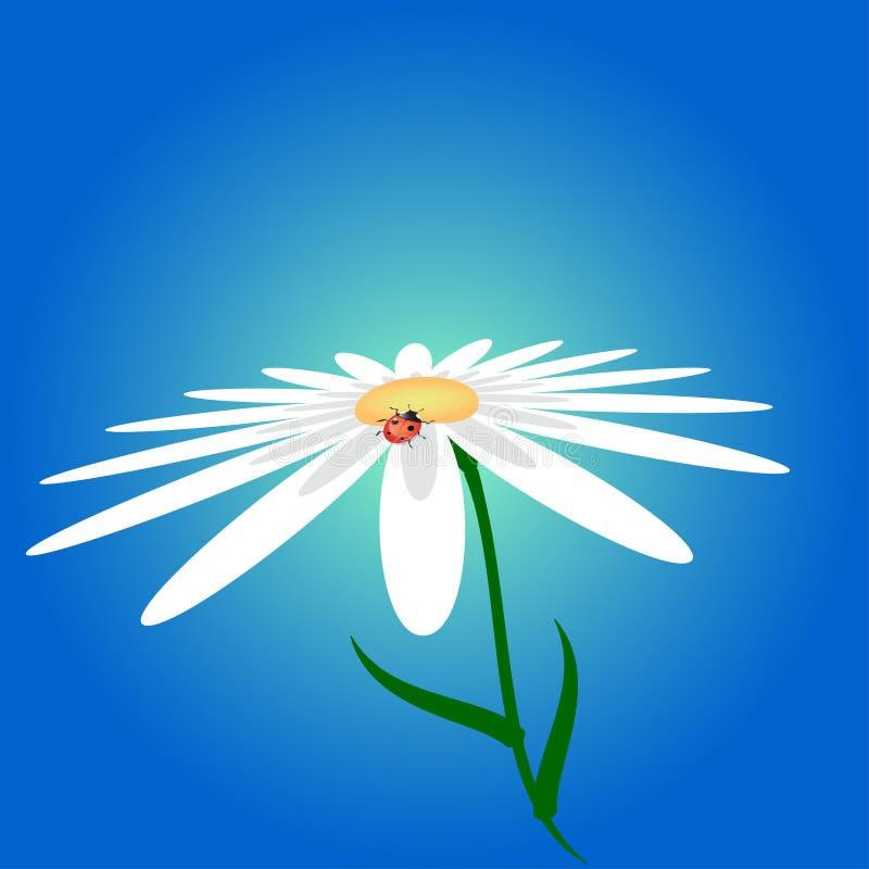 Mariquita y flor ilustración del vector
