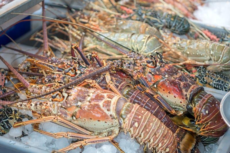 Marisco cru fresco das lagostas em um mercado do alimento fotografia de stock