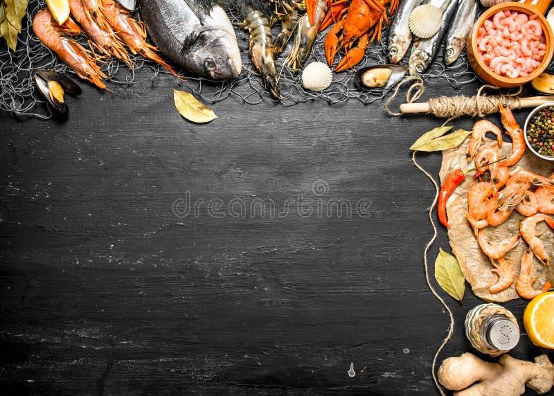 Marisco fresco Alimento de mar com especiarias e ervas foto de stock
