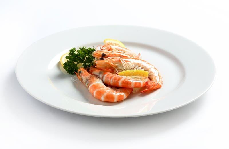 Marisco fresco do camarão foto de stock