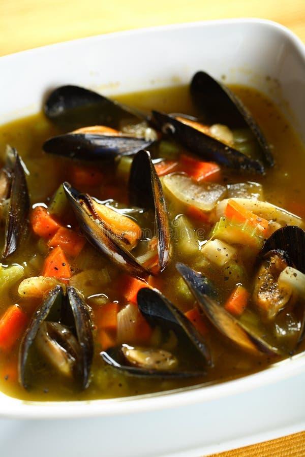 Marisco na sopa de vegetais foto de stock royalty free