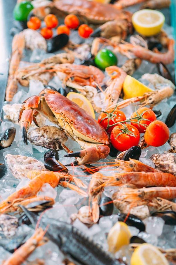 Marisco no gelo Caranguejos, esturjão, marisco, camarão, Rapana, Dorado, no gelo branco foto de stock