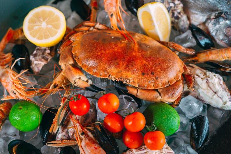 Marisco no gelo. Caranguejos, esturjão, marisco, camarão, Rapana, Dorado, sobre gelo branco fotografia de stock