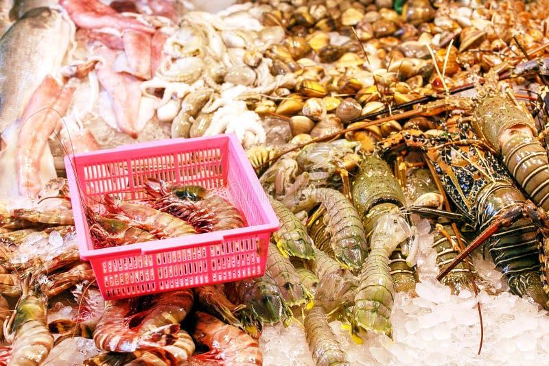 Marisco no gelo no mercado de peixes Lagosta, camar?es, mexilh?es e peixes imagens de stock