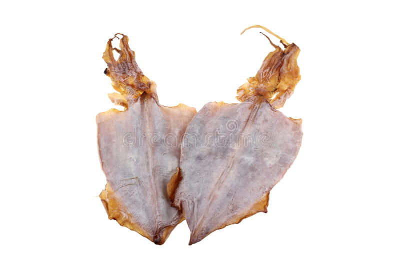 Marisco secado: Chocos macios do calamar do recife de Bigfin imagens de stock royalty free
